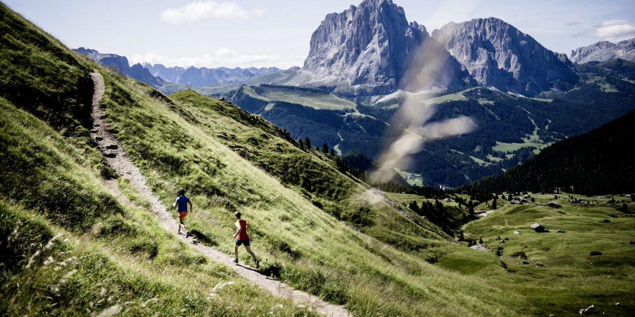 Trail 6000D –informations et conseils
