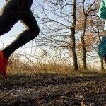 Trail des Sangliers – informations et conseils